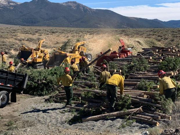 Chipping brush on Jakes Gulch Fire