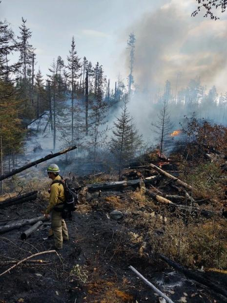 Fuels and fire behave on the Delta Lake Fire
