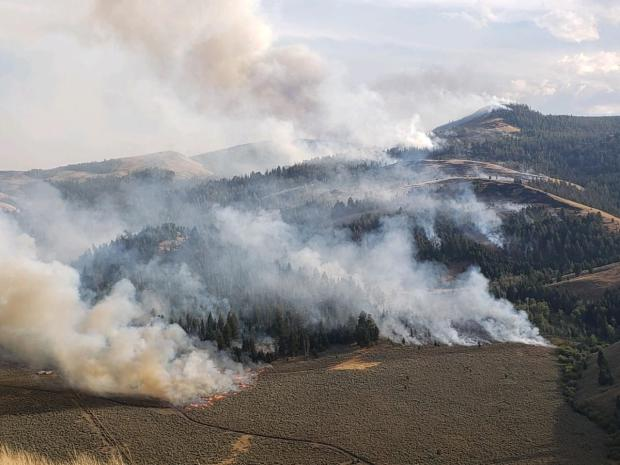 Aerial view of burn out operations on north flank of fire.