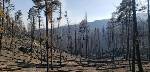 State Creek Fire September 15, 2020