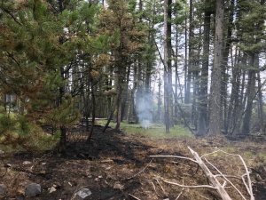 Fire Activity Example taken by IC Mike King