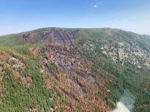 Photo taken from helicopter on east side of Hay Creek Fire showing a mix of burned and unburned areas.
