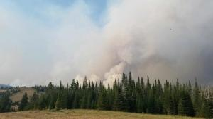 Smoke Plume from the Woods Creek Fire on July 26th.