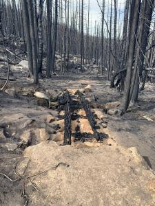 A recreation specialist takes note of a burned bridge that will need replacement along 118 Belt Crest Trail.  This is one out of nine bridges lost to the Woods Creek Fire.