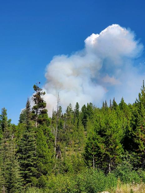 Heavy fuels and remote location of Cinnabar Fire