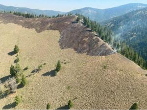 A steep ridgetop and mountain slope. The near side is grassy with scattered trees and the top has been burned black and is smoking. The far side of the ridge is treed and forested mountains stretch to the horizon.