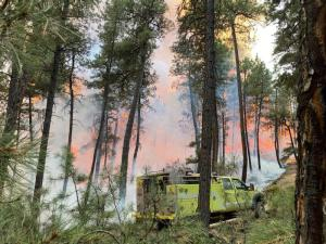 Active fireline with Engine in Lodgepole Pines