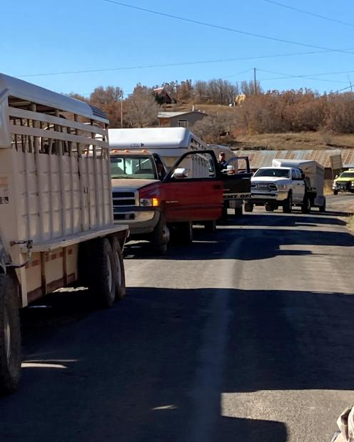 Family and friends traveled hours to assist in the moving of the cattle.