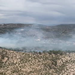 This video demonstrates the low intensity and positive effects  of the Johnson fire