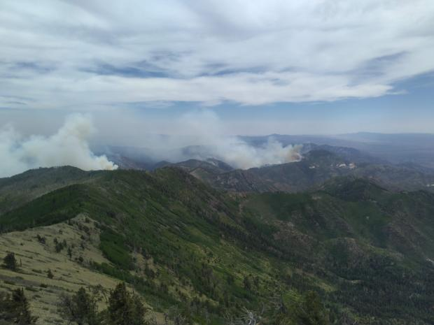 looking east at the Johnson Fire from the Mogollon-Baldy lookout
