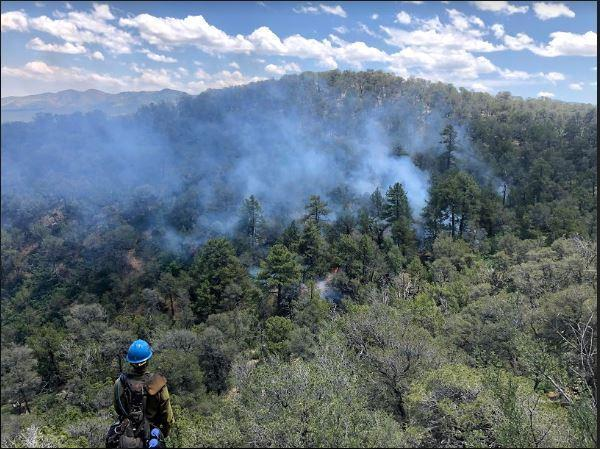 Overlook of Bear Canyon during burn operations. Smoke can be seen rising above the trees as a firefighter watches over the canyon.