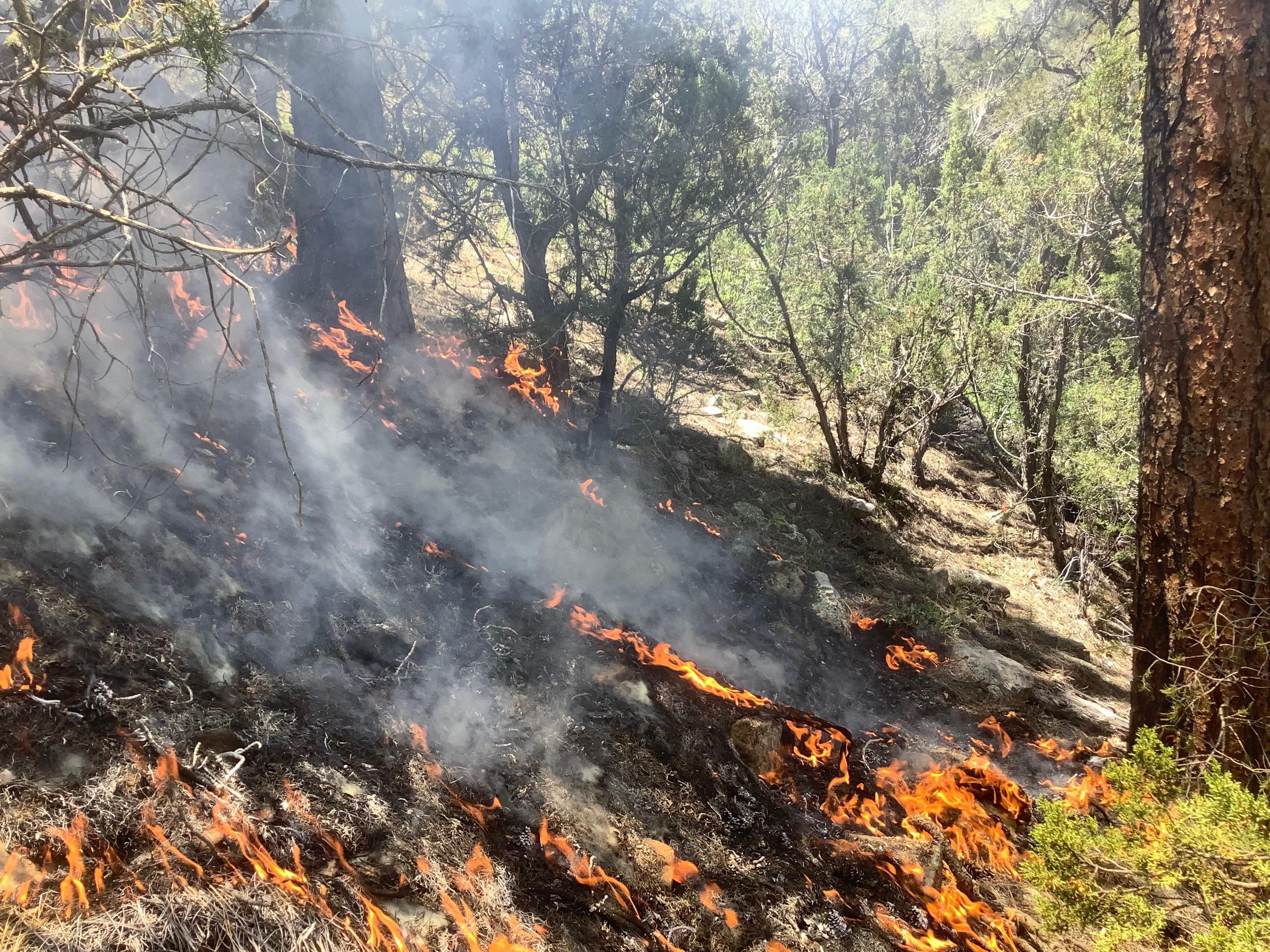 Smoke and small flames are seen creeping up the side of a slope.