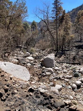 Hydrologist captures photo of Three Rivers Drainage after the fire.