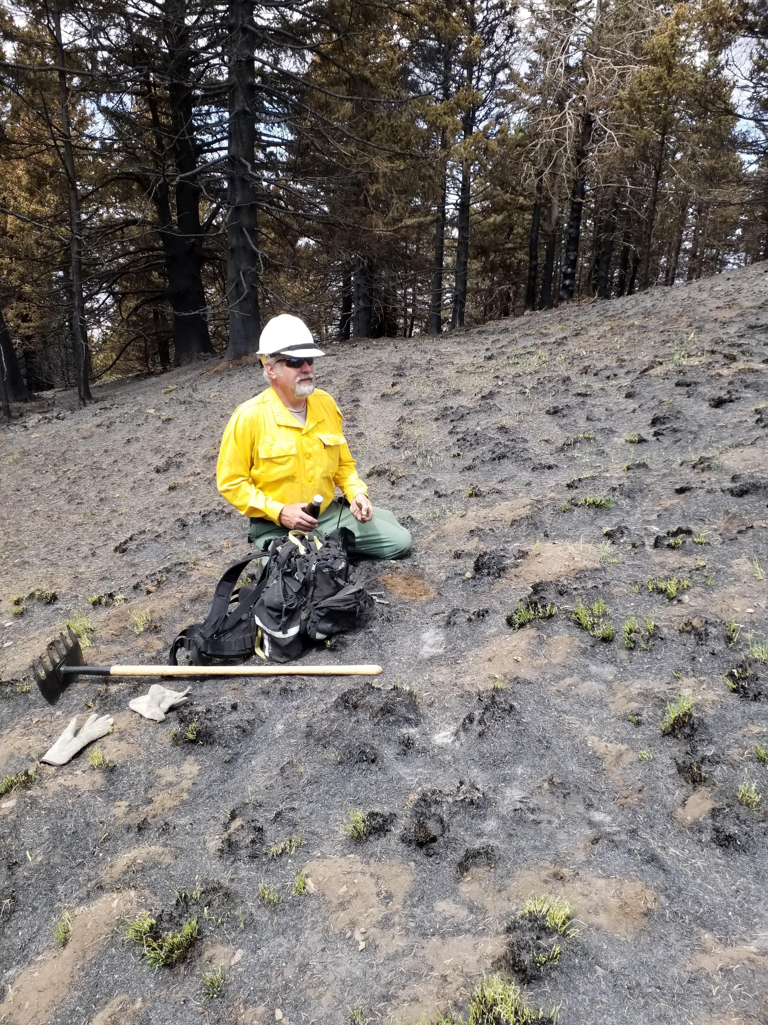 Soil Scientist examines soils within the burned area of the Three Rivers Fire
