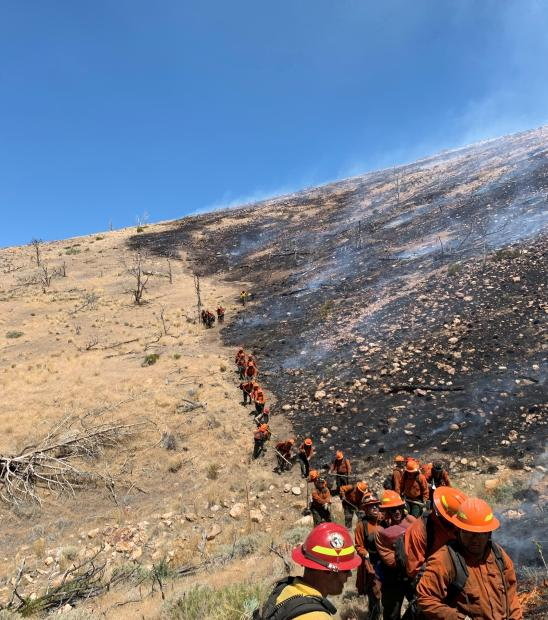 Wildland firefighters dig fireline on the Numbers Fire.