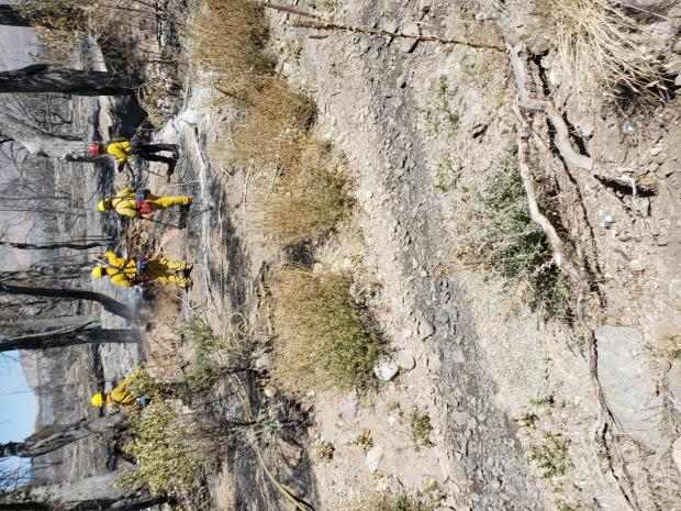 Firefighters standing on the burnt fire's edge with tools.