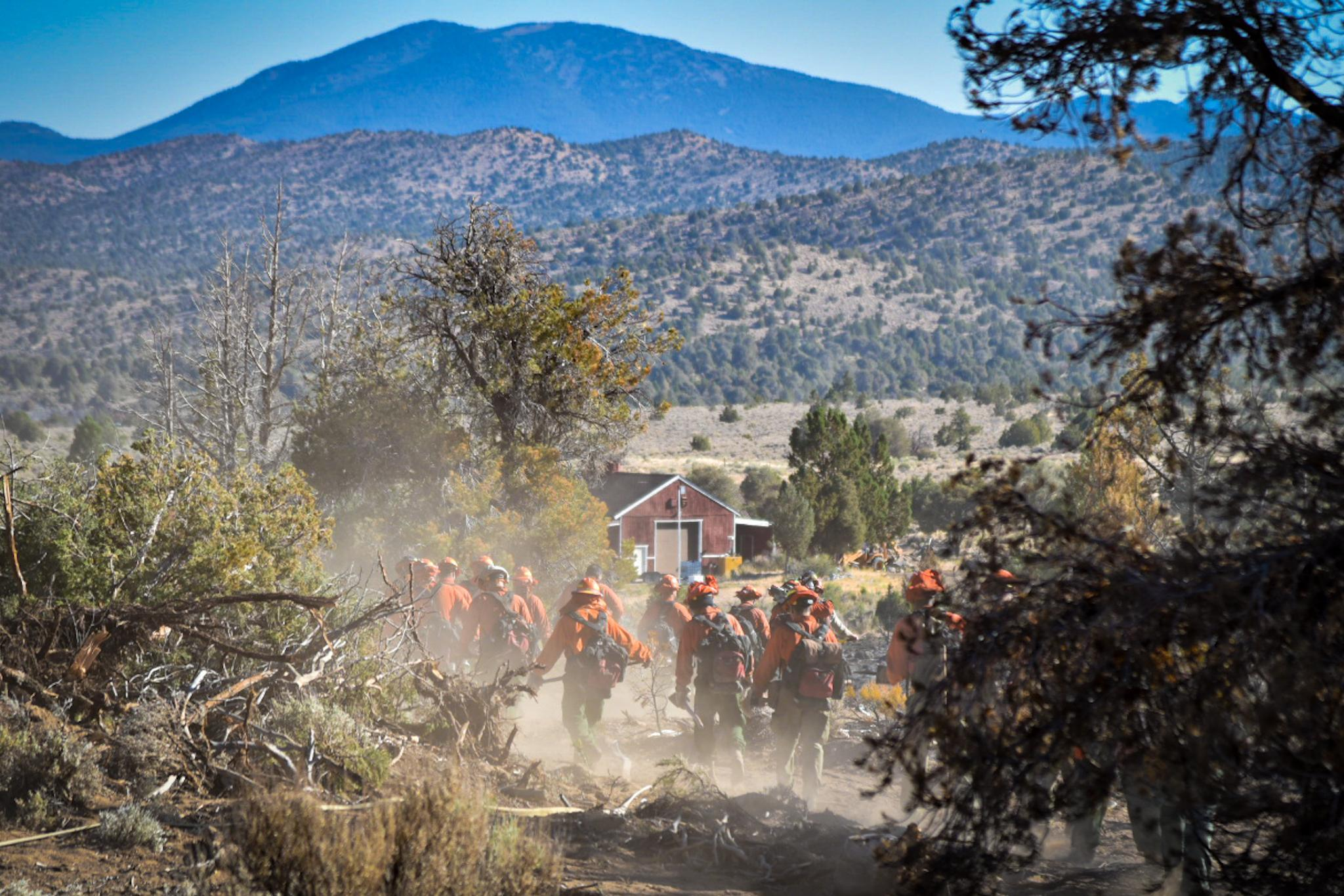Wildland fireflighters hike together with tools to fight fire.