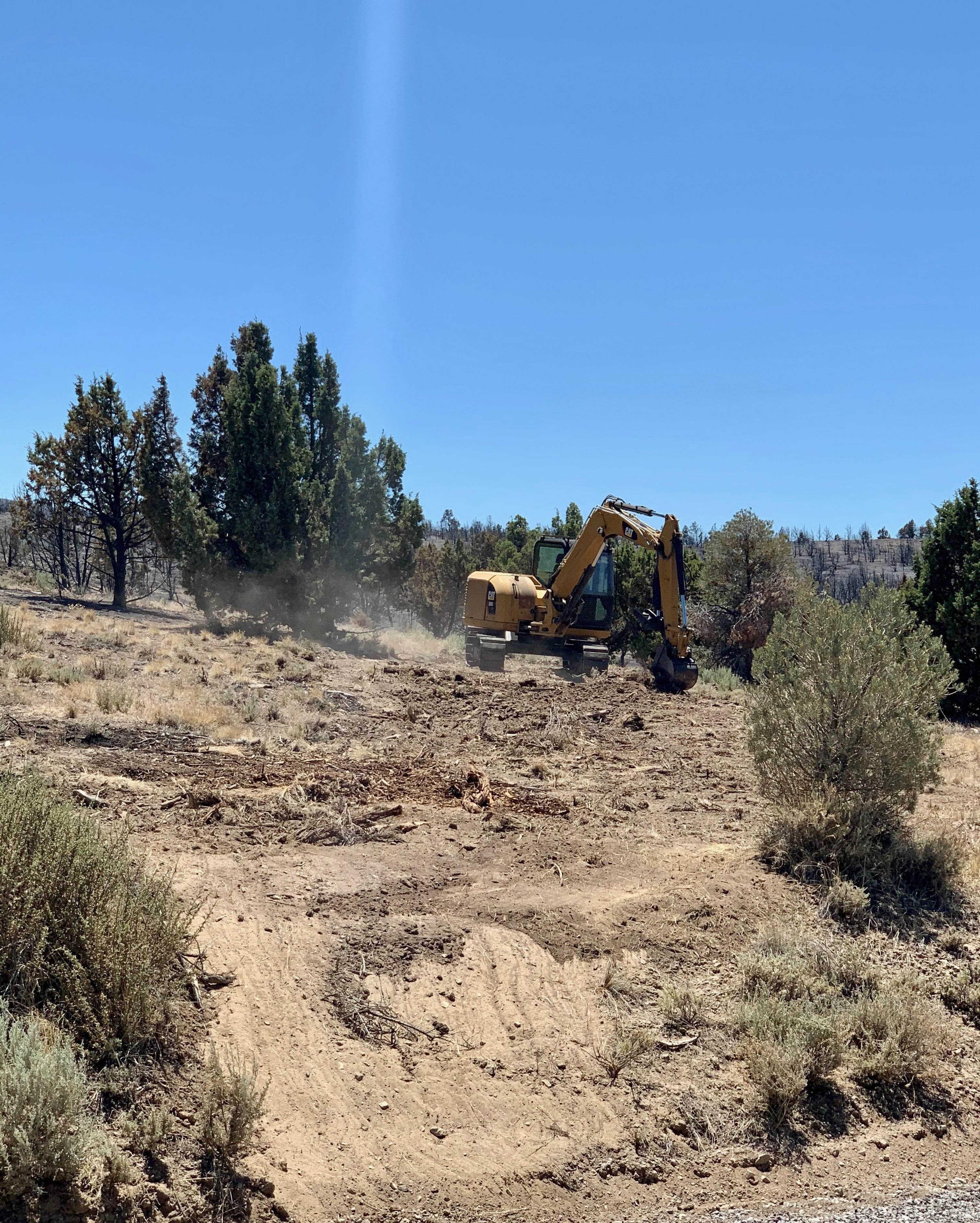 Dirt and vegetation with bulldozer.