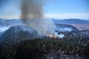 Photo showing trees torching on a high bluff