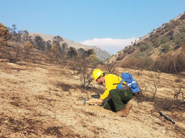 Soil Scientist working on the BAER team for the Cherry Fire.