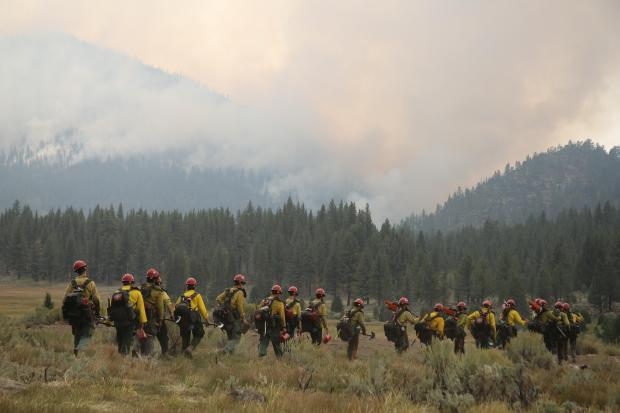 A line of 20 firefighters hiking towards a smokey mountain.