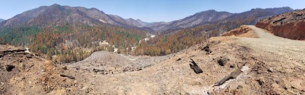 View of burn Milepost 97 fire