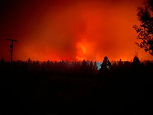 Distant fire creates an eerie red glow at night. A human-created light source glows in the foreground, amidst the treeline.
