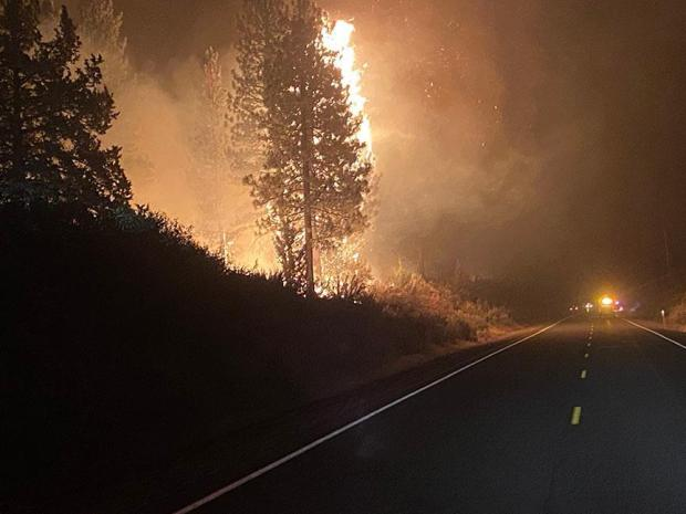 A single tree torches along a two lane highway, as emergency vehicle lights glow a short distance up the road.