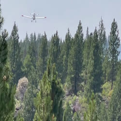 few short clips shot on the fireline of the Single Engine Air Tanker (SEAT) protecting properties to the north of the fire show how nimble these aerial firefighting planes really are. The news often covers the much larger air tankers appropriately called