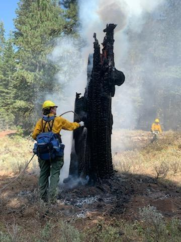 The Bootleg Fire has created serious safety hazards within the closure area, some of which will be ongoing until winter snows.   The fire has burned over cattleguards, bridges and roads, resulting in damage.