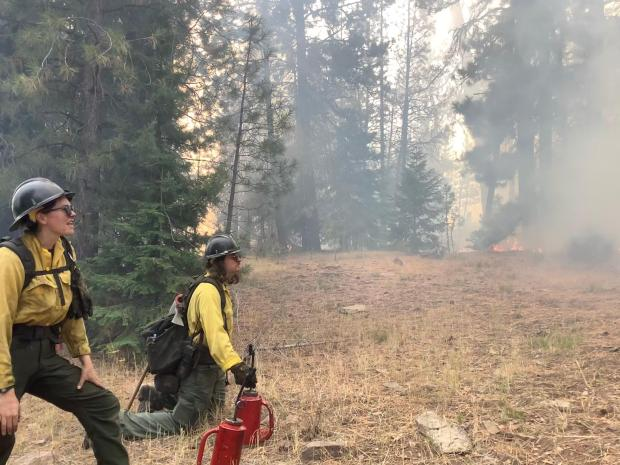 Image of two fire fighters watching low burning flames move along the ground while monitoring prescribed burn progress.