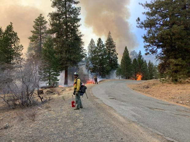 Image fire fighters working along road side with flames along road edge in background. Elk 16 L1 project area.