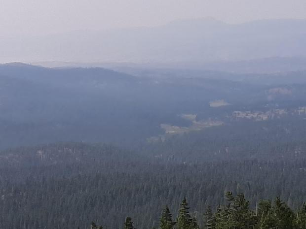 Image of small amount of smoke rising above the trees at Murderers Creek 6 prescribed fire operation.
