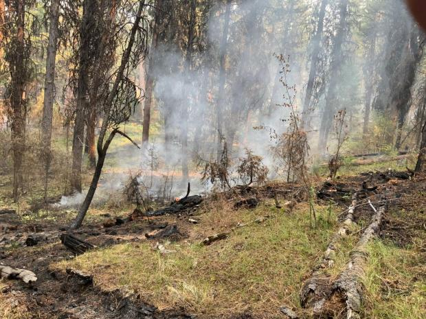 Images from Murderers Creek 6 prescribed fire area showing light smoke rising wooded area.