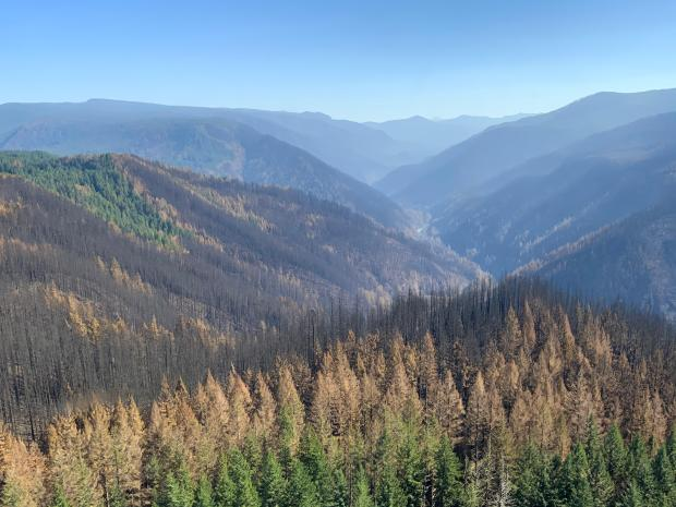 Aerial photos of wilderness affected by Riverside Fire
