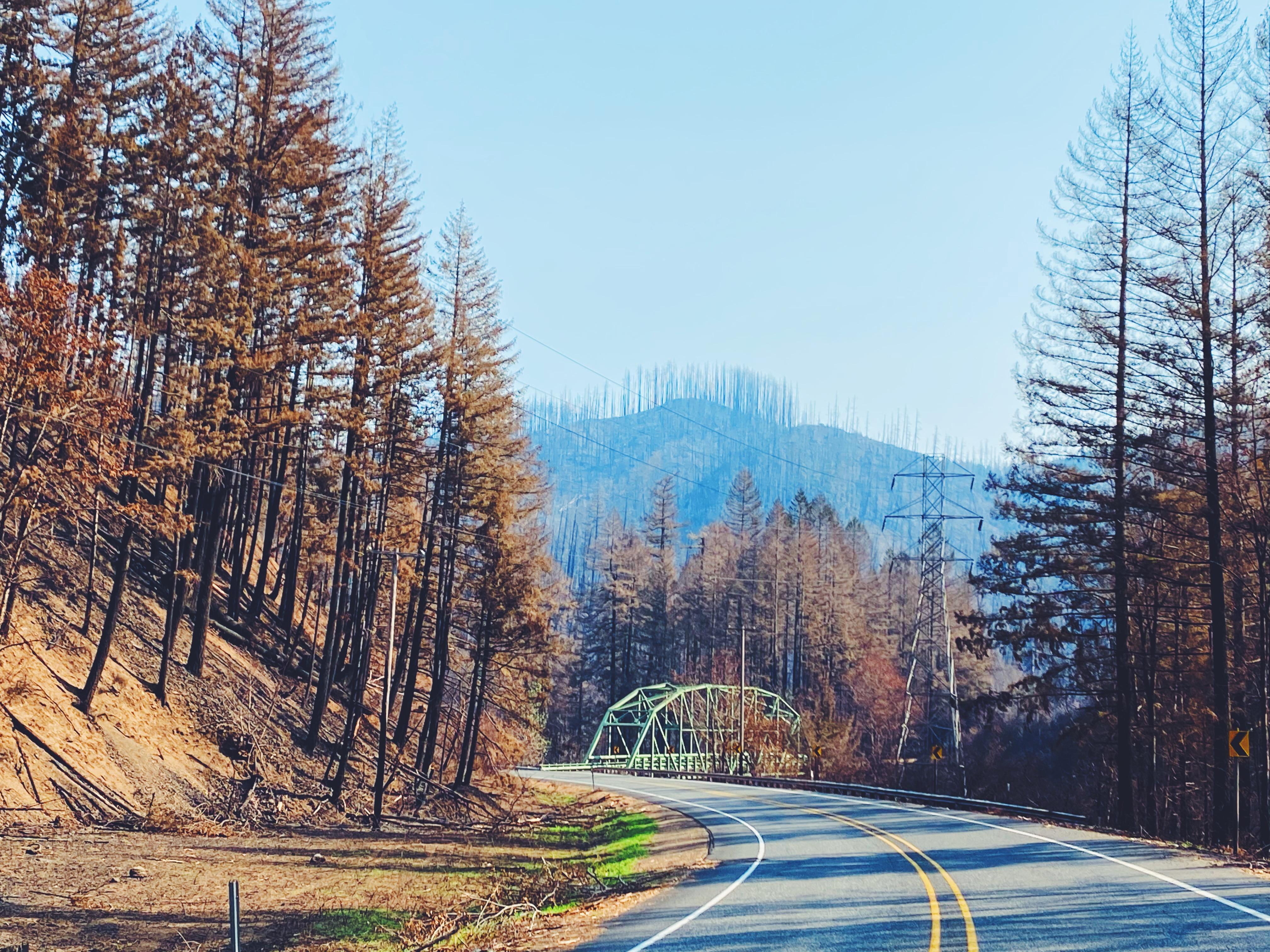 View of the Fish Creek Bridge from Hwy 224.