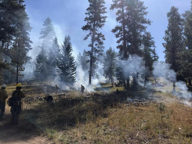 Firefighters successfully complete a 5-acre test burn Tuesday morning