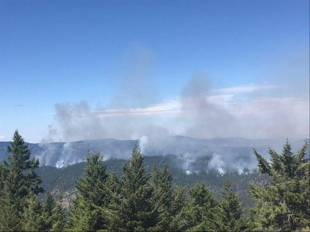 Overview of the Rx burn, early afternoon on Sept 3.