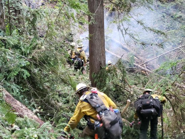FIrefighters walking through woods on a steep slope with light white smoke in front of them