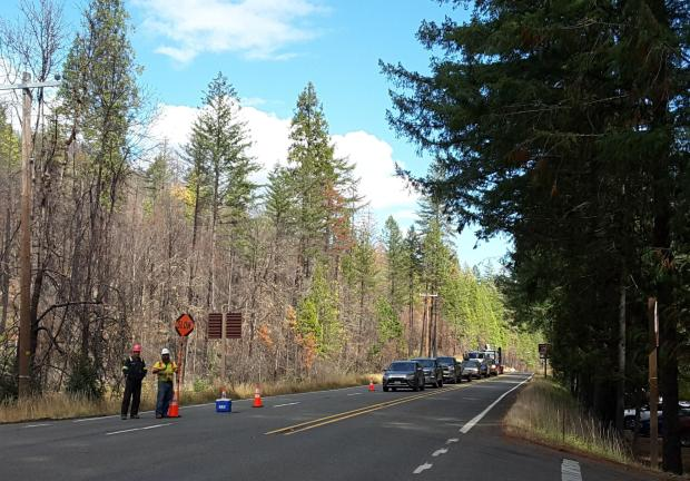 A line of vehicles waits for workers to grant them clearance to drive through  a work zone by the Susan Creek Day Use Area. The burned trees in the background were damaged by the Archie Creek Fire in 2020.
