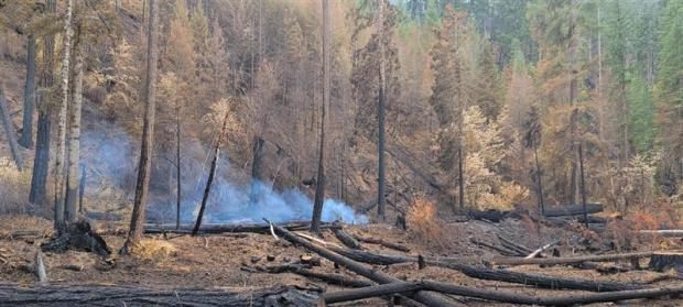 a log smolders on the north side of the Big Hamlin fire after a half inch of rain on Saturday, 9/18