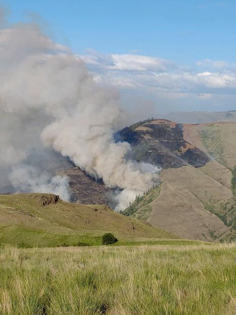 Sunday view of the Joseph Canyon Fire from Rye Ridge. Photo by Andy Hayes, Wallowa-Whitman National Forest