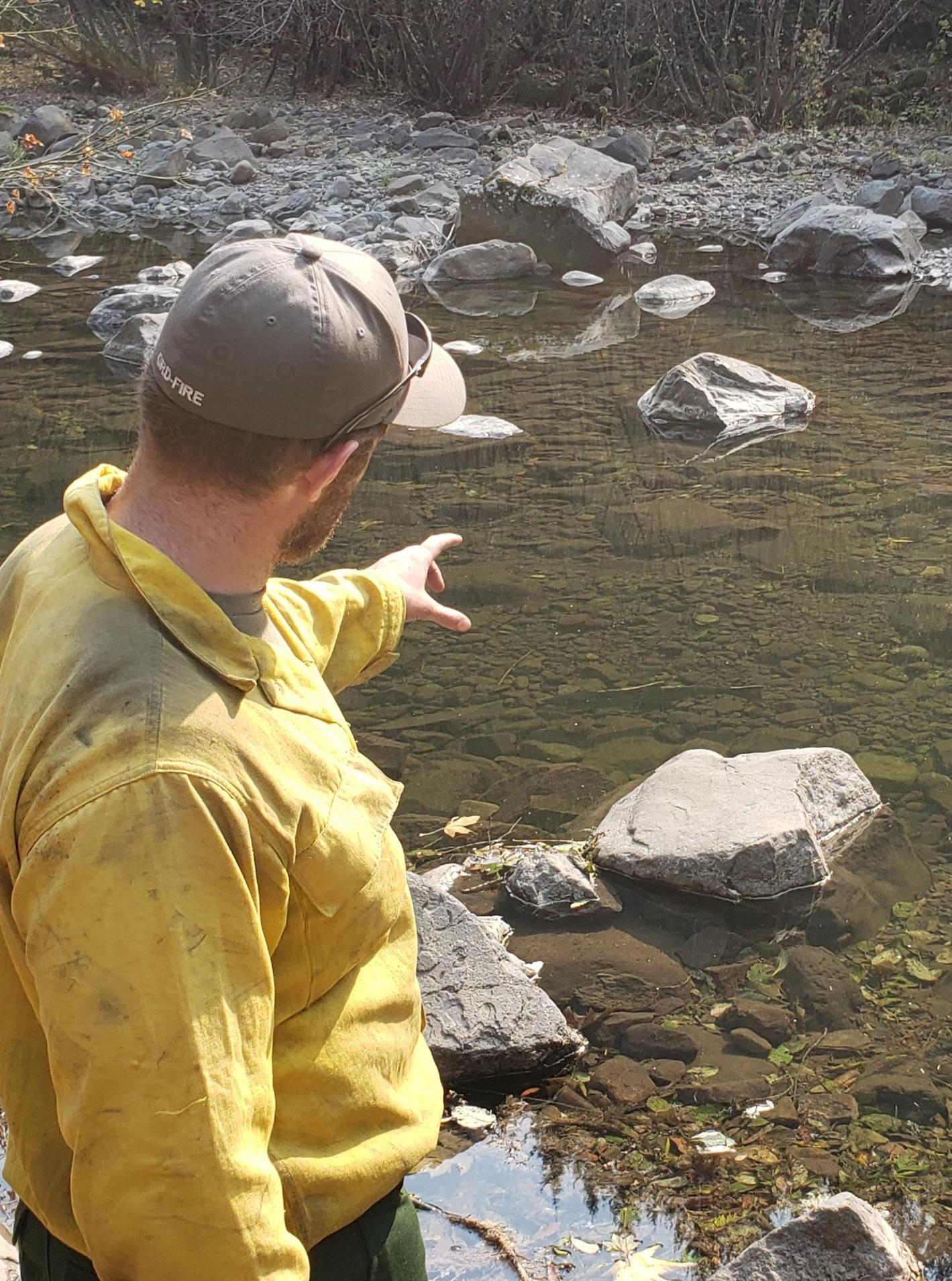 BLM Hydrologist Peter Kauss observing Chinook Salmon in Molalla River