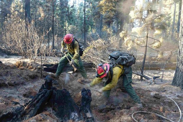 Two crew members chopping up a stump to cool it off in Divison N September 20.