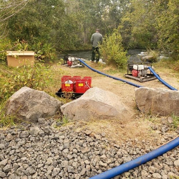 Portable pumps are used to pump water into portable tanks, for mop up and to fill engines.