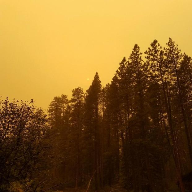 Yellow skies above the fire.