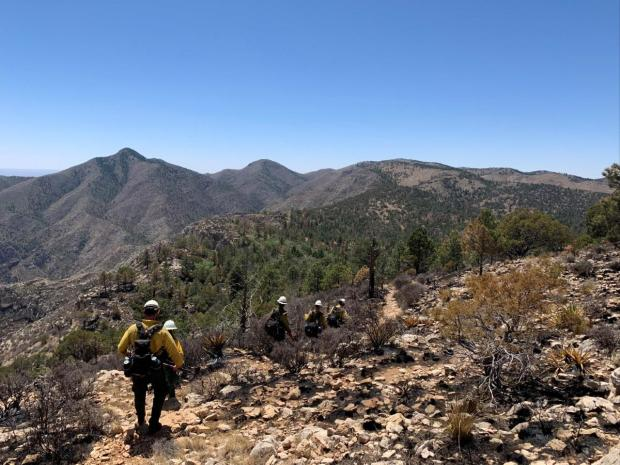Firefighters hiking fire line