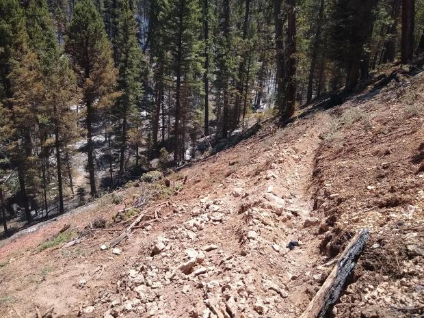 Photo of cup trench dug hand line