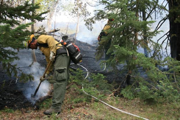 Two firefighters are visible in a smoky evergreen forest, spraying water on areas of heat.