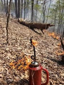 Drip torch used to ignite prescribed burns